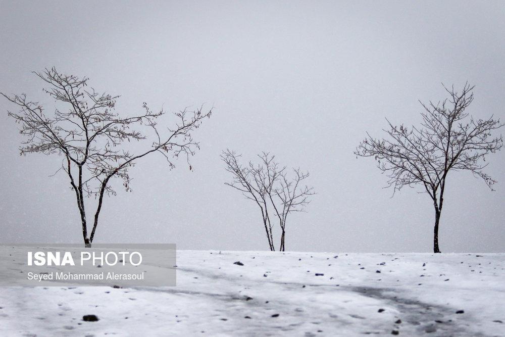 بارش برف – استانها