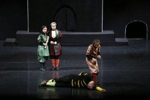 اپرا-تئاتر+شاخ+نبات+در+تالار+وحدت-2
