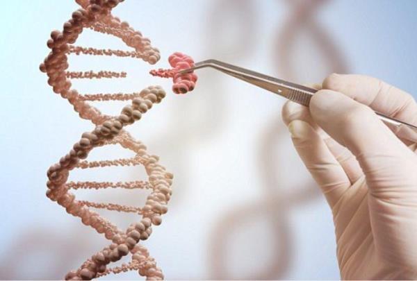 ما از ژن های خوب مگر چه خواسته ایم