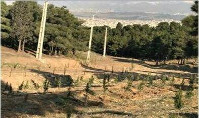 سرخهحصار قطب گردشگری پایتخت میشود