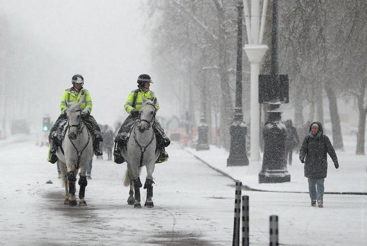 سرما در اروپا همچنان قربانی می گیرد