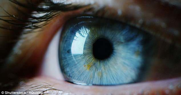 تاری دید نشانه بیماری شبکیه است