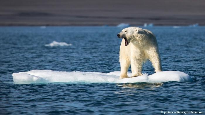تشدید تغییرات اقلیمی در ۳۰ سال گذشته