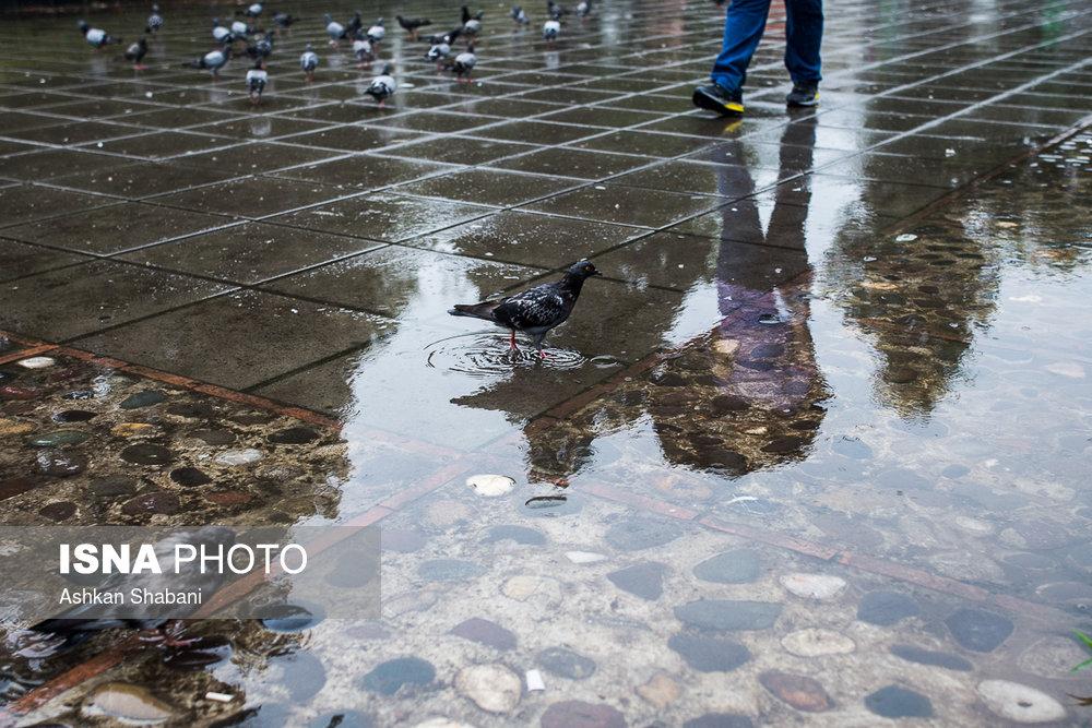 بارش شدید باران در گلستان و مازندران