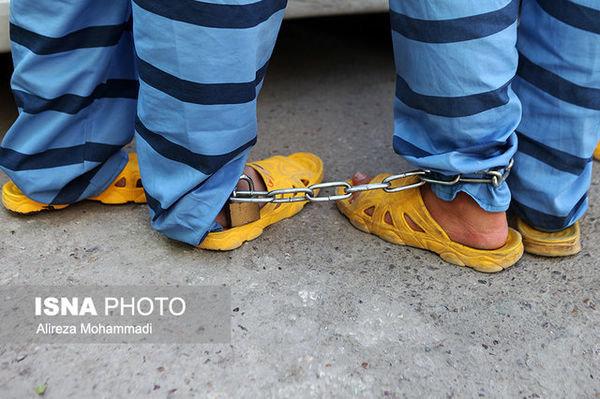 دستگیری یکجای ۱۱ نفر در شهرستان نور