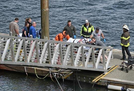 برخورد مرگبار ۲ هواپیمای آبنشین در آسمانِ آلاسکا