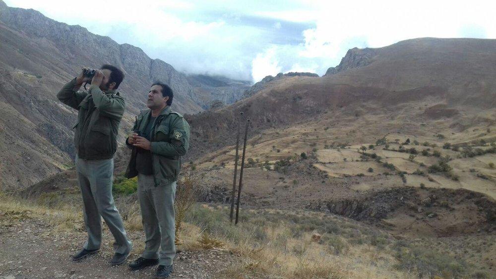 ۴ محیطبان بازداشتی کرمان آزاد شدند