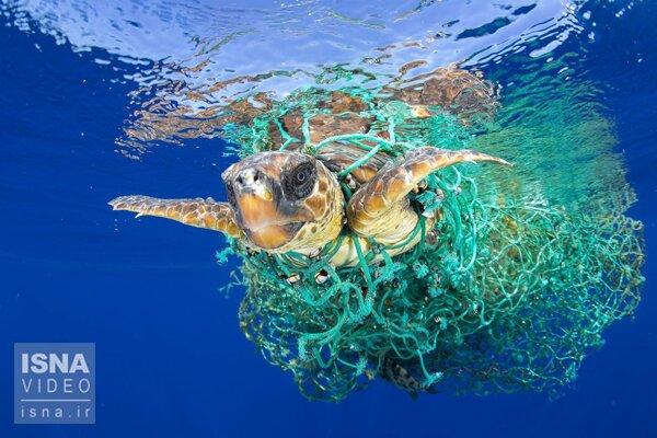 ویدئو / جزیرهای از زباله، وسط اقیانوس آرام