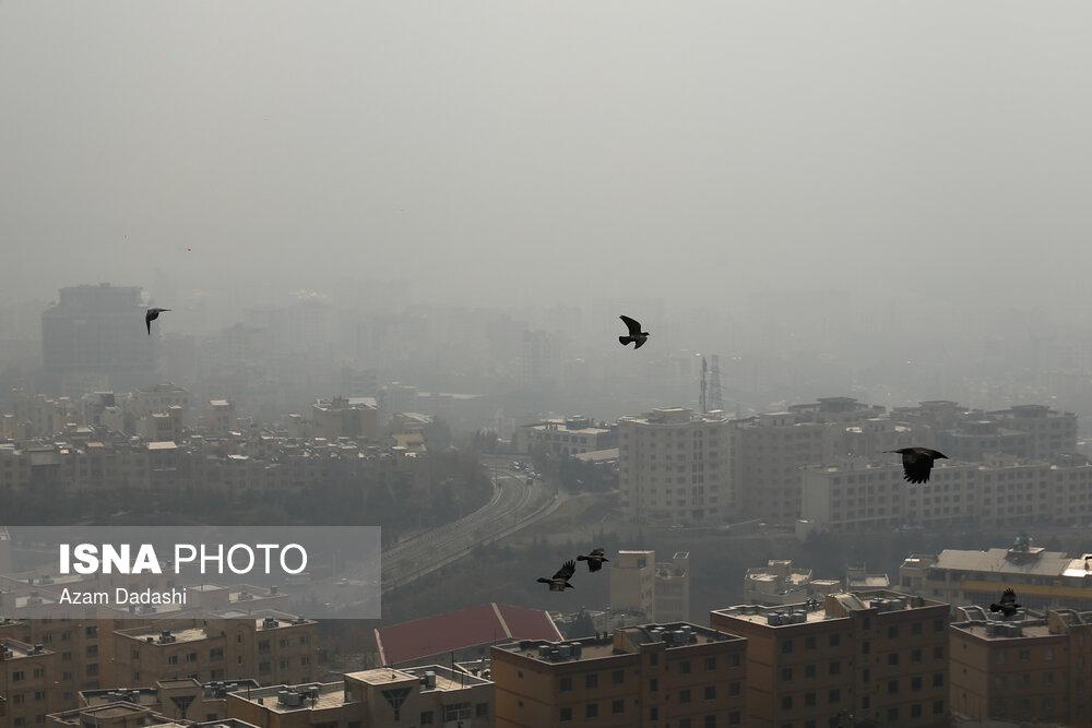 هشدار درباره احتمال افزایش آلودگی هوا در پاییز در پی کاهش ساعت طرح ترافیک و وارونگی دما