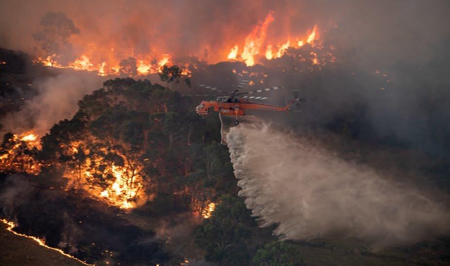 آتشسوزیهای جنگلی استرالیا تصویری از آینده زمین