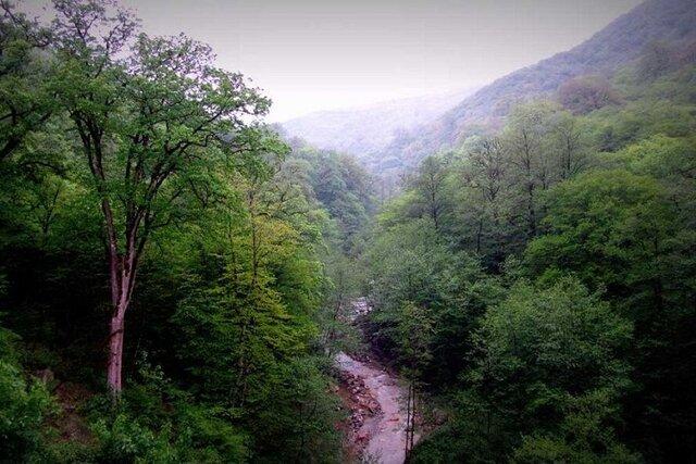 بهرهبرداری از سامانه پایش هوایی جنگلهای هیرکانی در مازندران