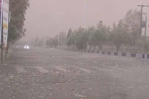 هوای شیراز برای گروههای حساس سالم نیست
