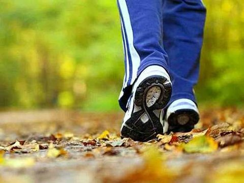 درخواست سازمان ورزش شهرداری برای واکسیناسیون مربیان ورزشی