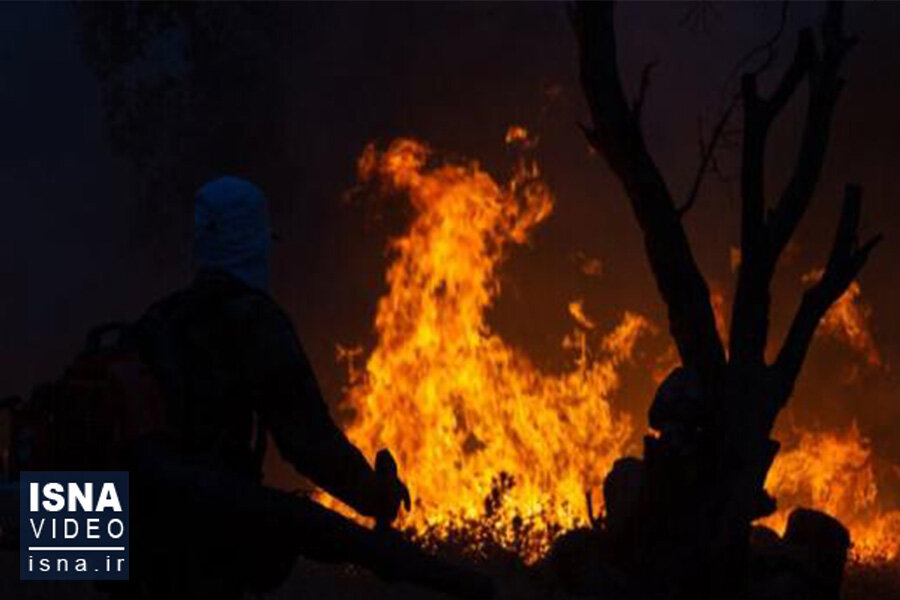 ویدئو / زاگرس هنوز در آتش میسوزد